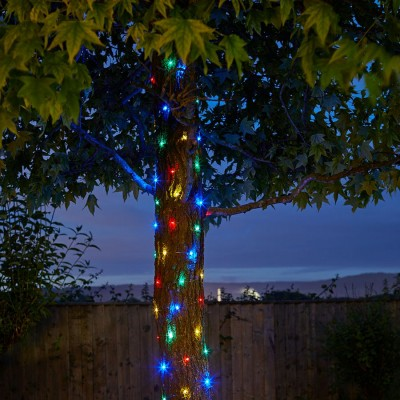 100 Firefly String Lights Multi-colour