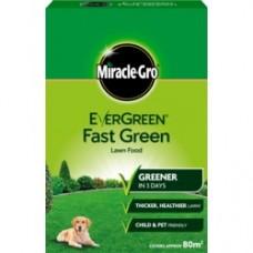 Eve Fast Green 80m2 Lawn Food