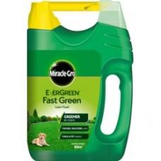 Eve Fast Green 80m2 Sprdr