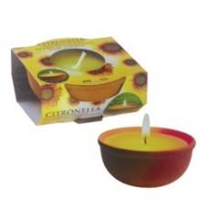 Citronella Terracotta Pot Small