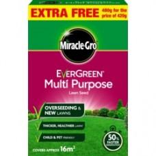 Eve M/Purp Grass Seed 16m2