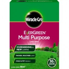 Eve M/Purp Grass Seed 56m2