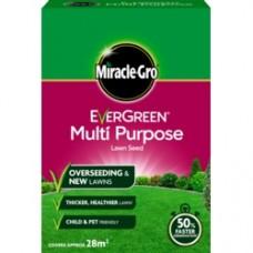 Eve M/Purp Grass Seed 28m2