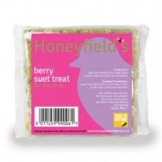 Berry Suet Treat 300g