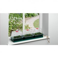 Three Top Window sill Propagator